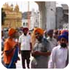 The striking turbans of the Sikhs