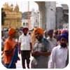 Los llamativos turbantes de los sijs